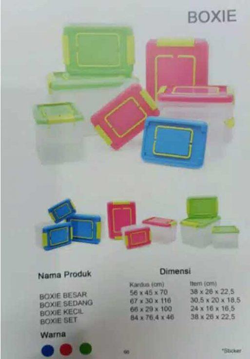 box plastik container