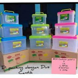 Box Container Plastik Transparan
